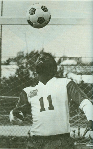 Blizzard 81 Home Jomo Sono center num