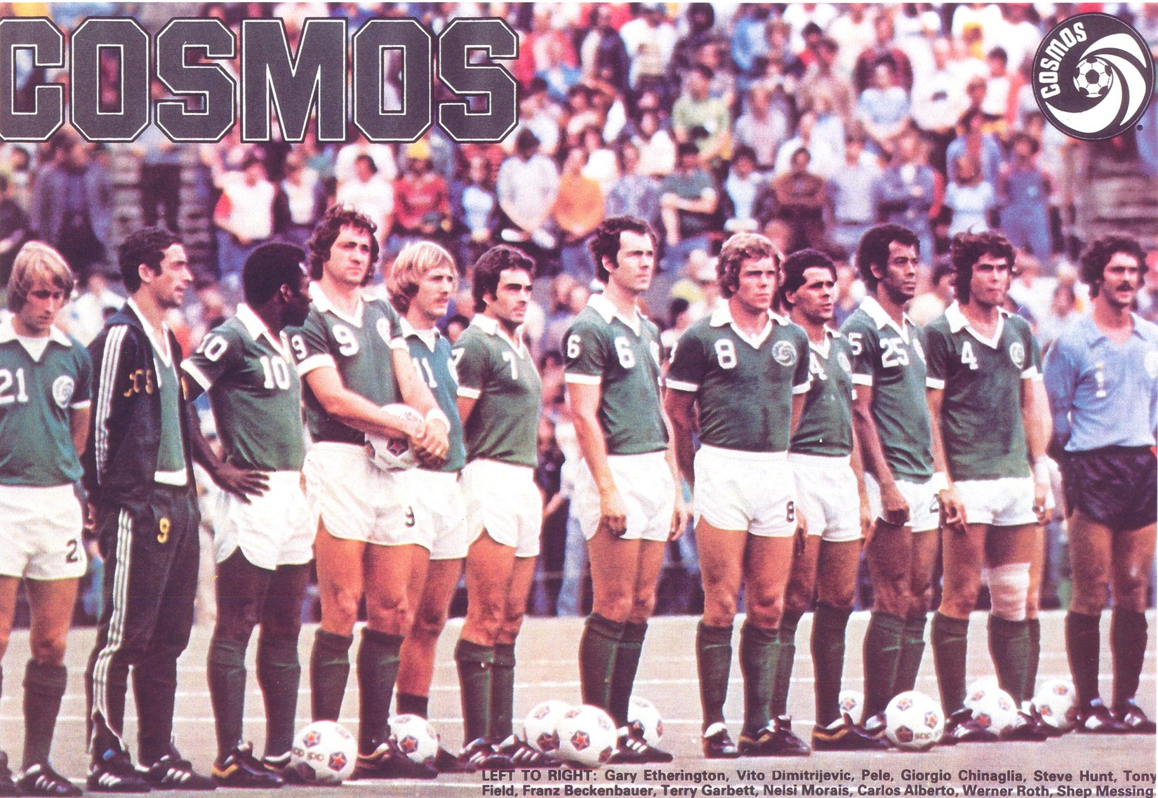 Image Result For New York Cosmos Lineup