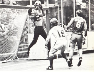 Arrows 79-80 Goalie Shep Messing, Molnar