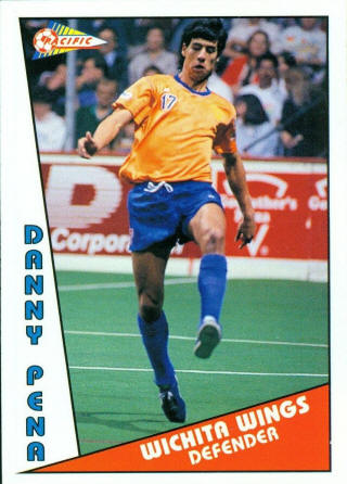 Wings 90-91 Home Danny Pena