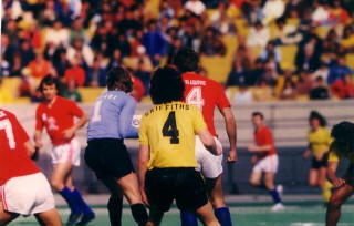 Chicago Sting 1977 Home Back Clive Griffiths.jpg