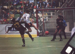 Sting 87-88 Home Back 13, Strikers 4